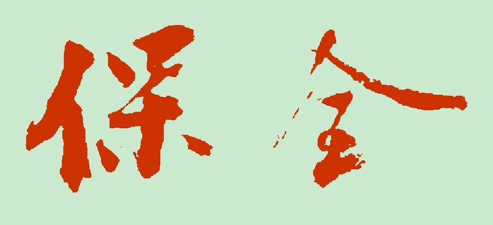 《安徽省高级人民法院关于进一步规范涉及企业财产保全工作的意见》及新闻发布会稿(word版)